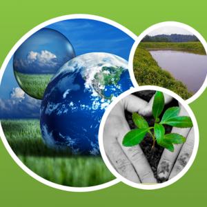 تاثیر کیفیت آب و خاک بر طراحی سامانههای آبیاری و زهکشی